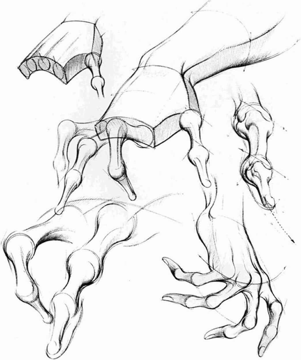 Drawn fist hand movement Forms Joshua Drawing Curves Nava