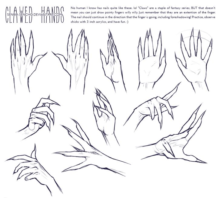 Drawn fist hand reference Best Pin and Study Anatomy