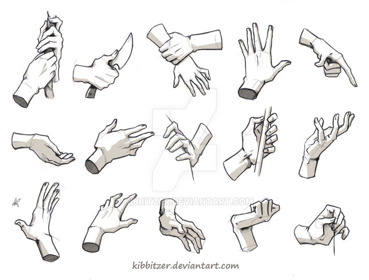 Drawn fist hand reference Best Anatomy on  Hands