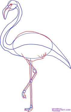 Drawn animal flamingo #9