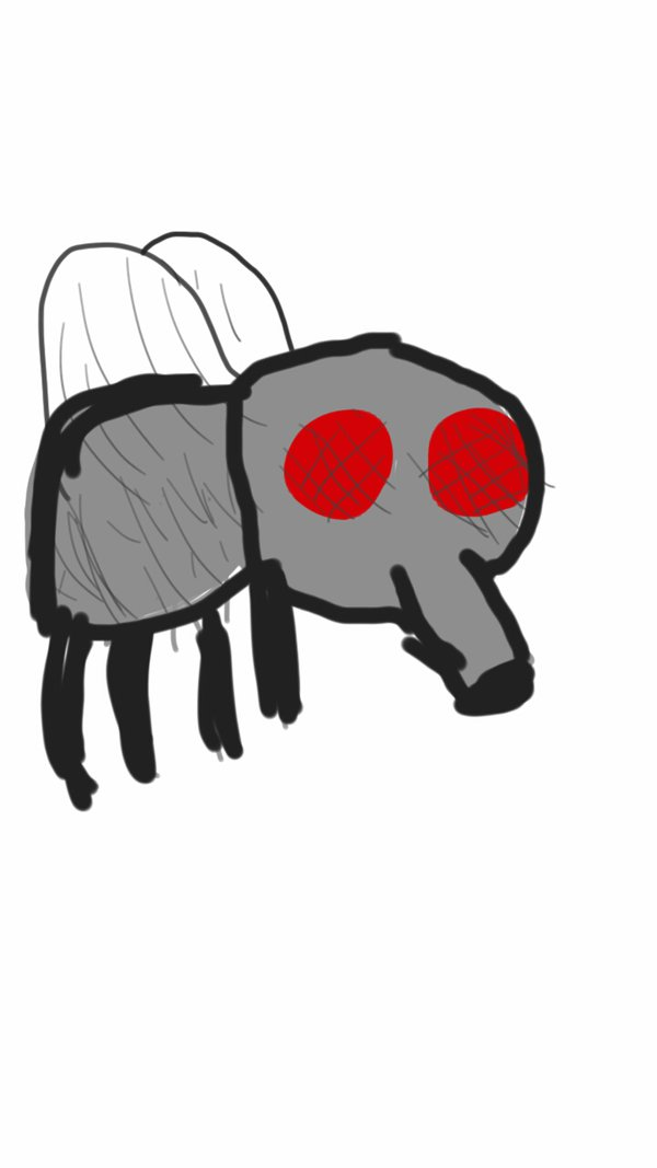 Drawn fly Fly drawn on by jaws4therevenge