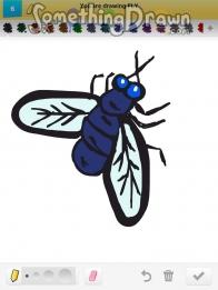 Drawn fly Draw com Something drawings of