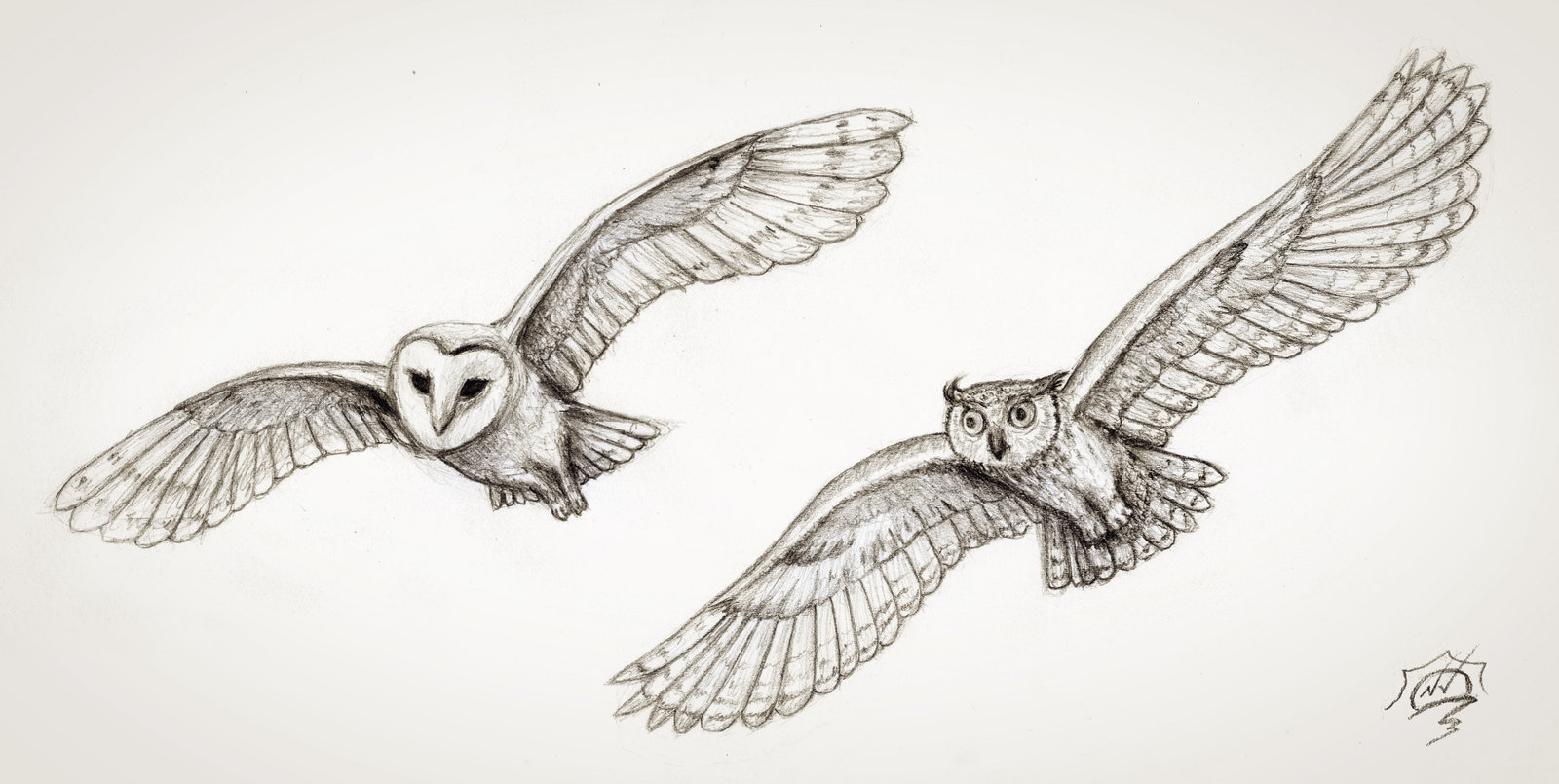 Drawn flying #8