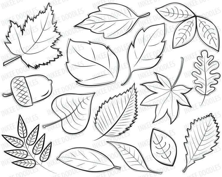 Drawn amd clipart InkeeDoodles Clipart Digital by Stamps