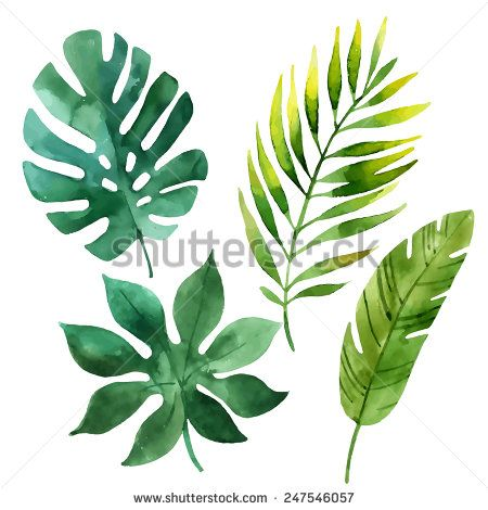 Drawn jungle jungle foliage On stock in Watercolor Hand