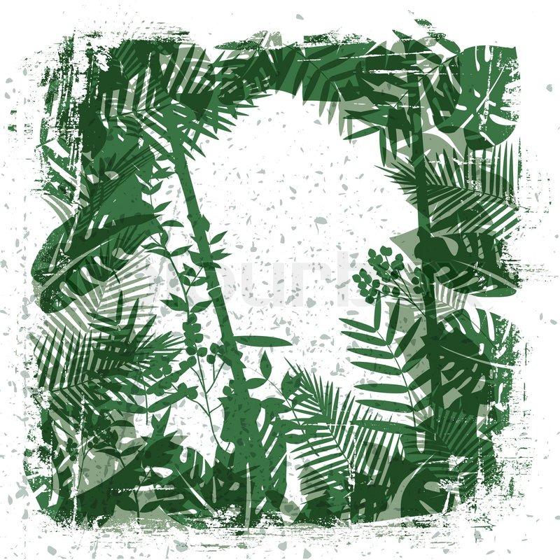 Drawn jungle jungle foliage Clipart clipart (64+) Leaves vector