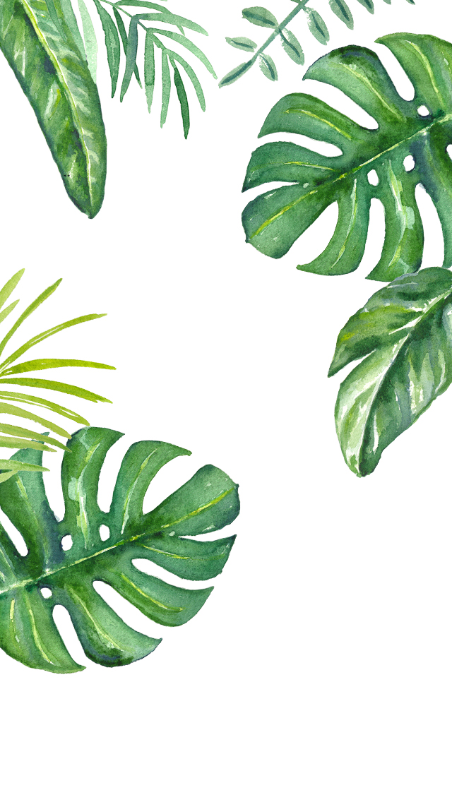 Drawn jungle jungle foliage IPhone DLOLLEYS Wallpapers 5s HELP: