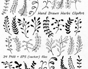Drawn leaves Drawn Herbs Silhouette art clip