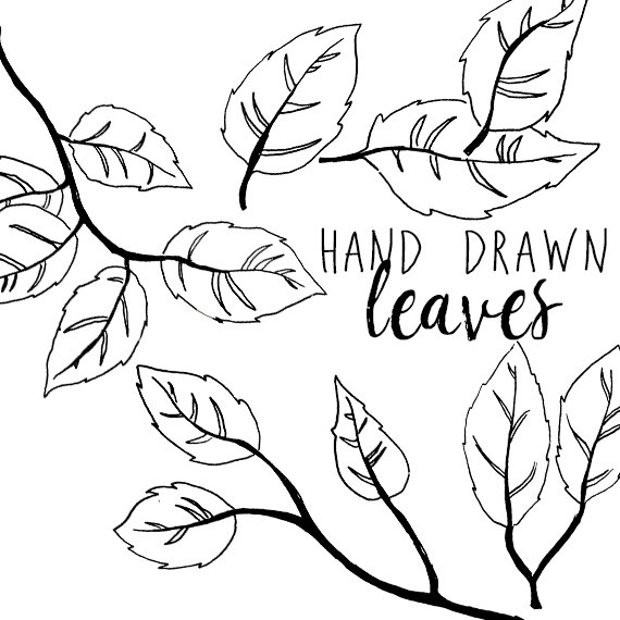 Branch clipart drawn Branch on Festive Clip from