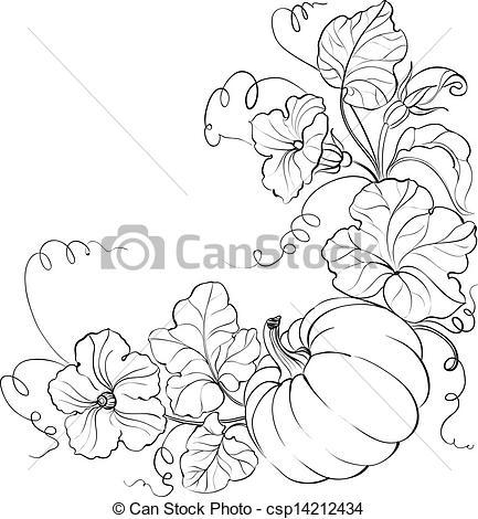 Drawn pumpkin pumpkin flower Pumpkin csp14212434  Pumpkin with