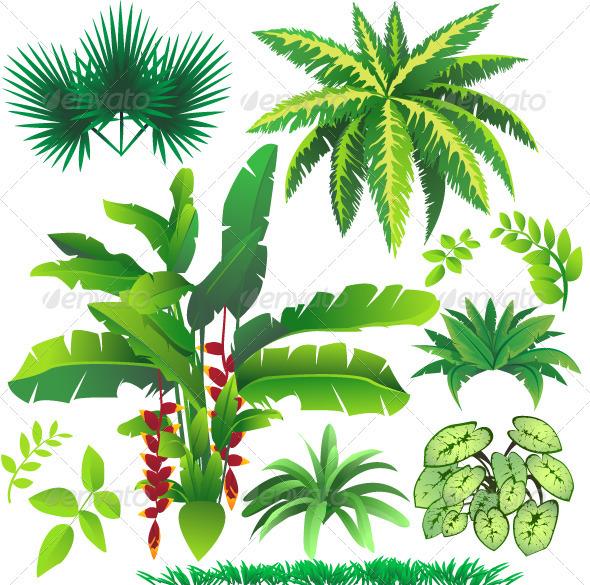 Drawn palm tree rainforest tree #5