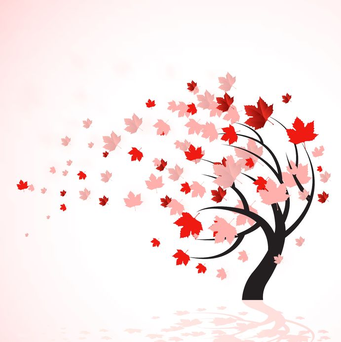 Leaves clipart windy Drawing leaves Red drawing pink