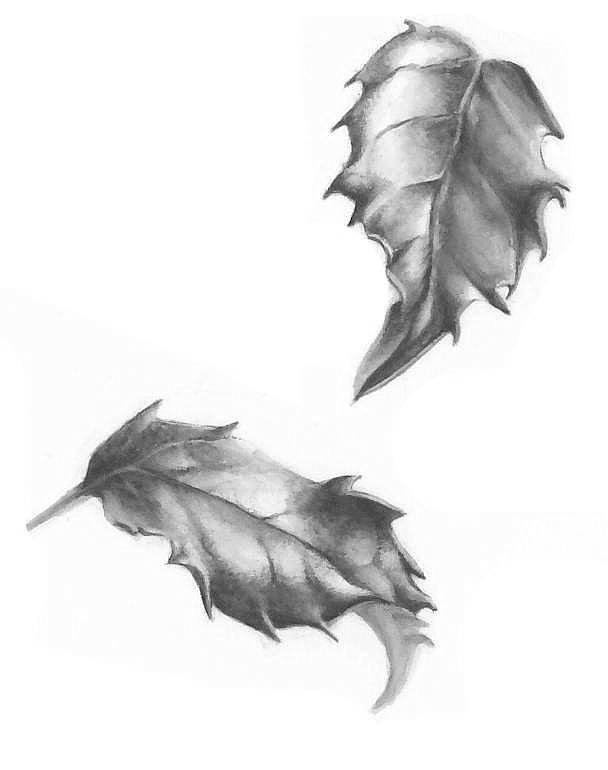 Drawn leaves tonal In Lorraine Tattoo greyscale Adams