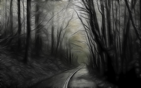 Drawn forest Drawn CG drawn forest forest
