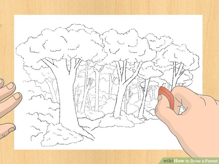 Drawn scenic forest Draw Step Draw Ways 7