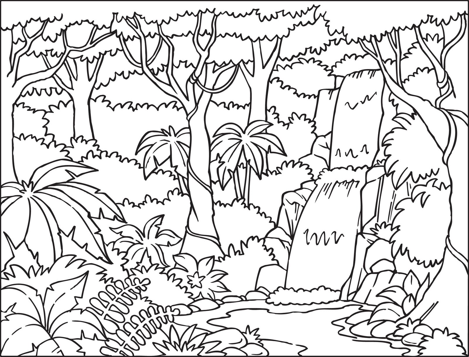 Drawn rain black and white Kids RAINFOREST colouring Coloringpages321 COLORING