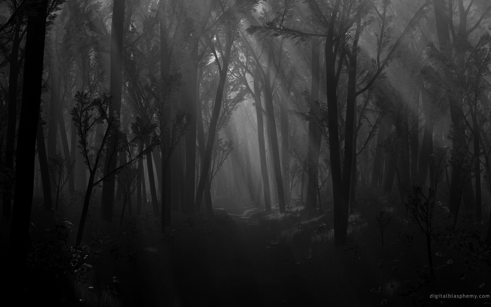 Drawn jungle spooky Wallpaper Cave Forest #8775879 Dark