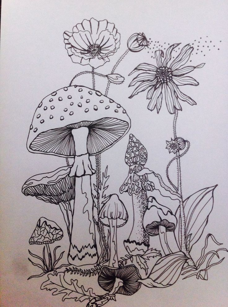 Drawn mushroom character Forest drawing best Pinterest Forrest