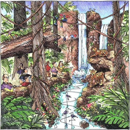 Drawn rainforest natural environment Leggitt 06 Blog 071211 Jim