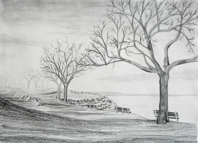 Drawn river pencil drawing How with Trees forest to