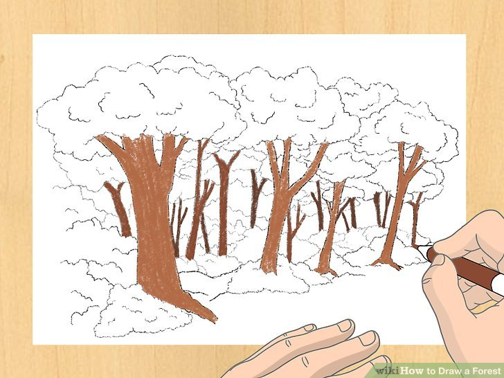 Drawn scenic forest Draw Step Draw Ways 8