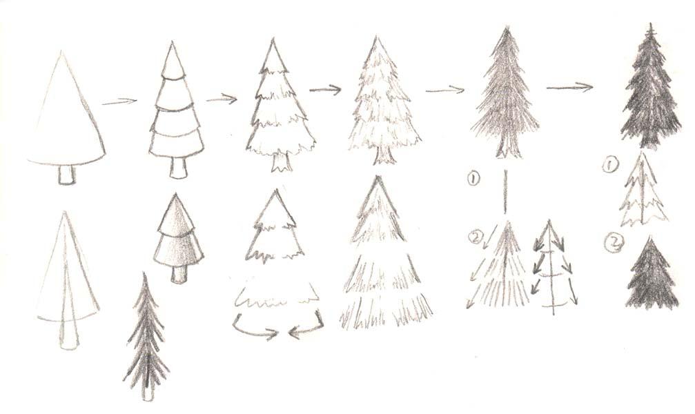 Drawn tree forest tree Manga  Tutorials