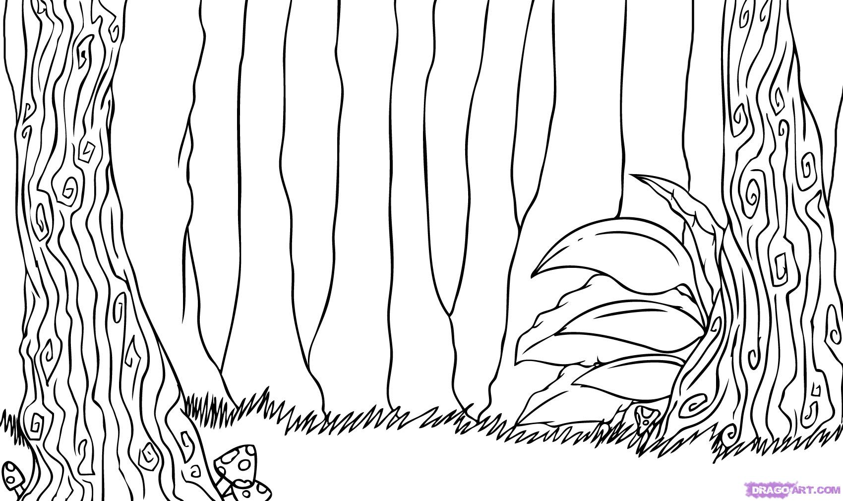 Drawn rainforest jungle scenery Kids drawings how Background Pages