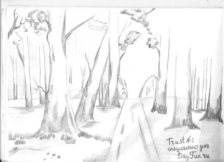 Drawn forest spooky Forest to COM 4 How