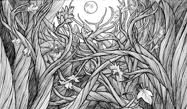 Drawn forest spooky 52: macabre emphasized communicated Gammel's
