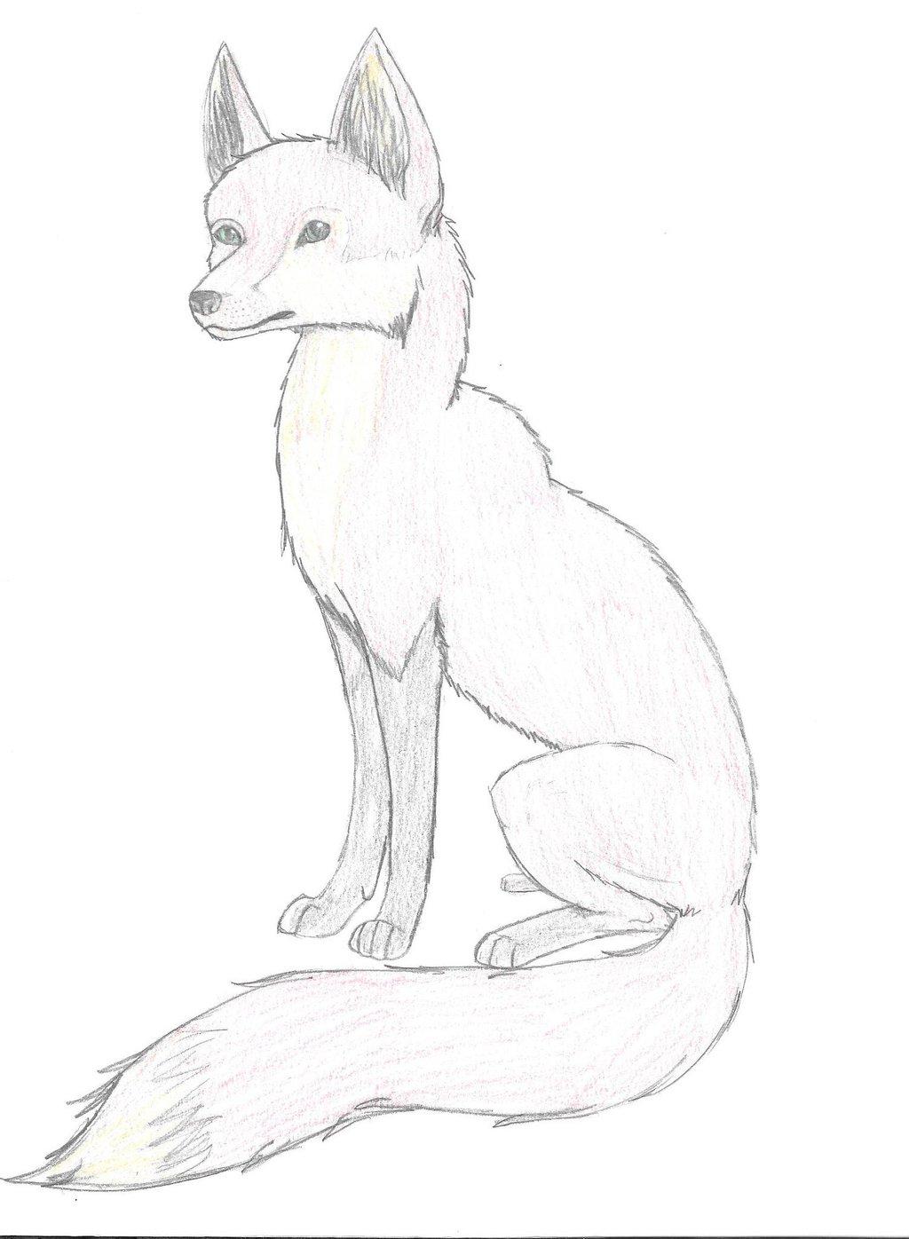 Drawn fox Pic Fox by echowolfS Fox