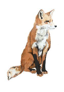 Drawn fox Simple Fox! Best kind of