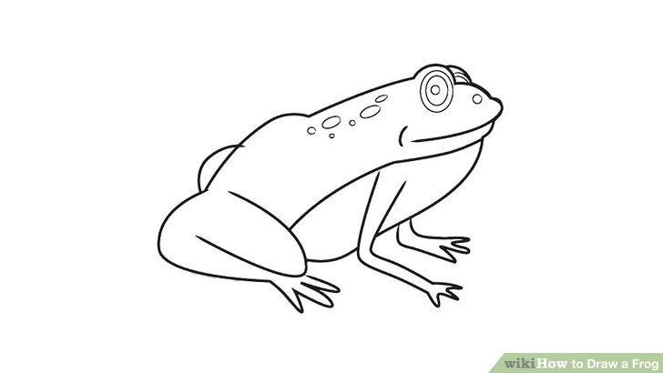 Drawn frog Draw preview by to Step