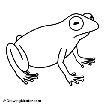 Drawn frog Draw Tutorial frog How a