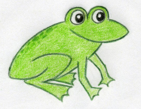 Drawn frog Green contour the darker Draw
