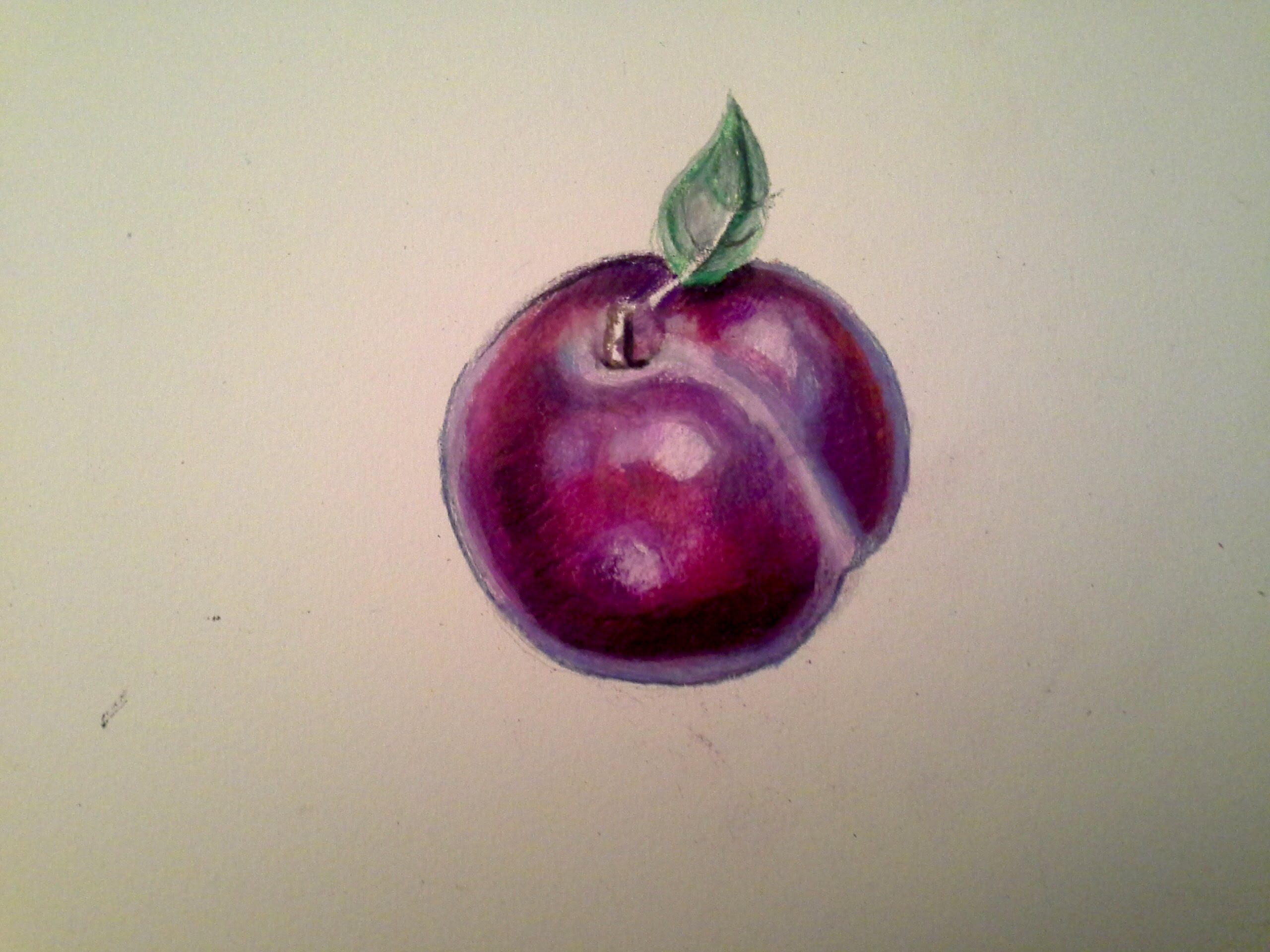 Drawn pencil fruit W/  & Color Pencils