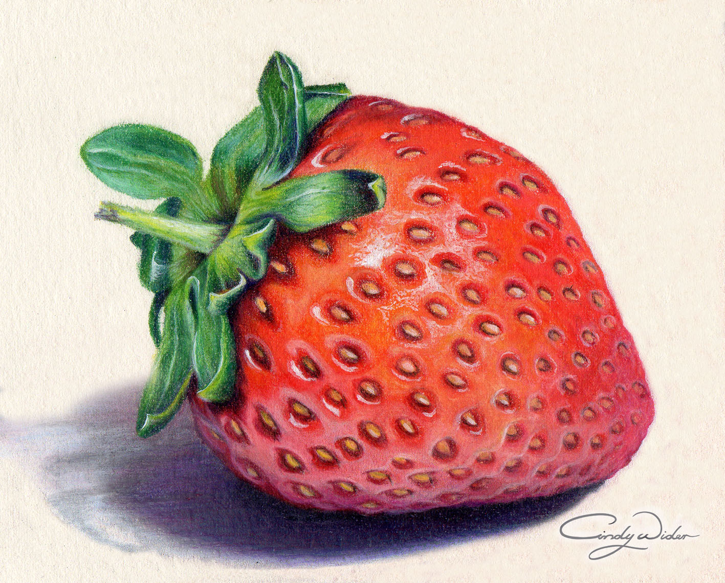 Drawn strawberry strawberry leaf Waterford was Pencils Prismacolour Leaves