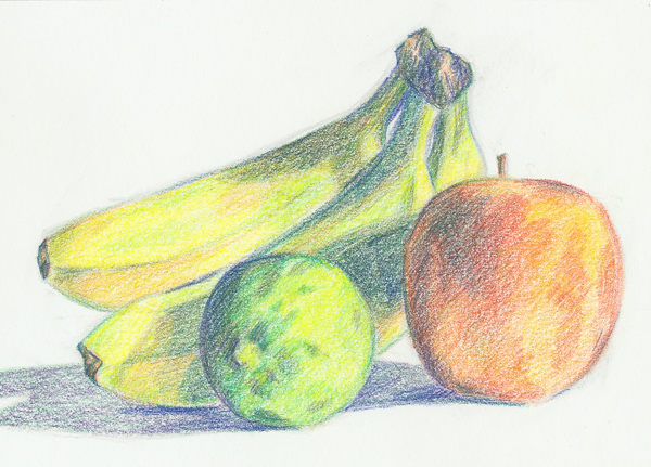 Drawn still life pencil color Technique image Layer Pencil product