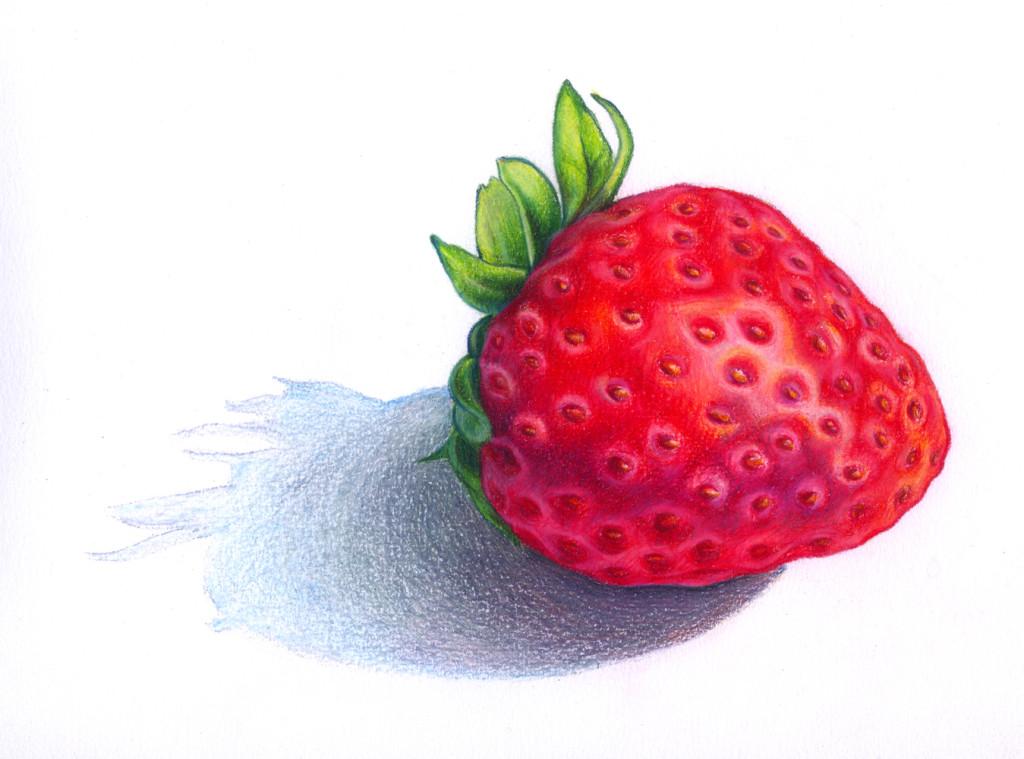 Drawn strawberry color pencil Drawings Strawberry Lauren » Yurkovich