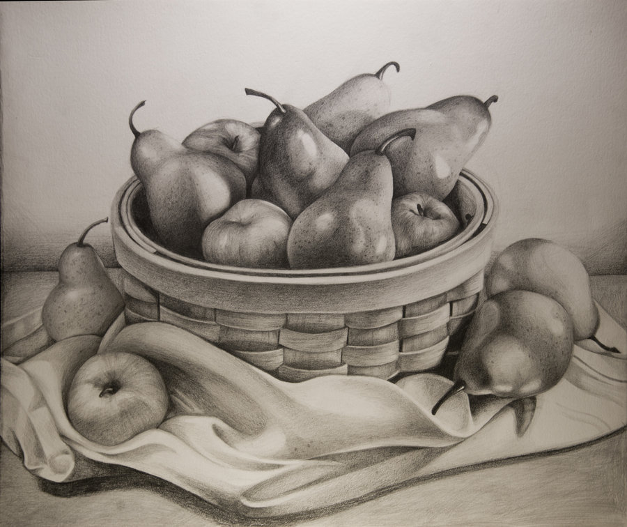 Drawn pencil fruit  Fruit by on starbeams