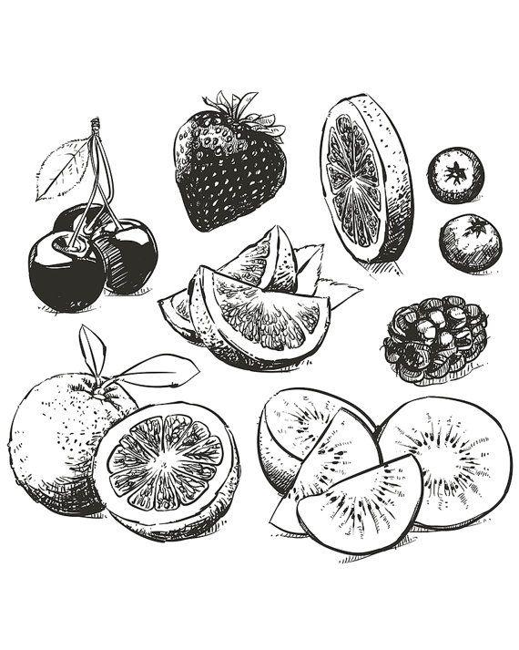 Drawn amd fruit 80% collection 20+ drawn fruit…