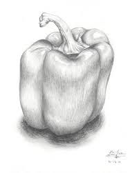 Drawn pencil fruit Drawings  Drawing IdeasStill fruits