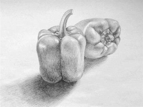Drawn pencil basic Of Life Pencil nature best
