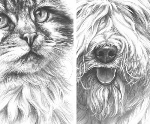 Drawn fur Use drawing Life fur Line