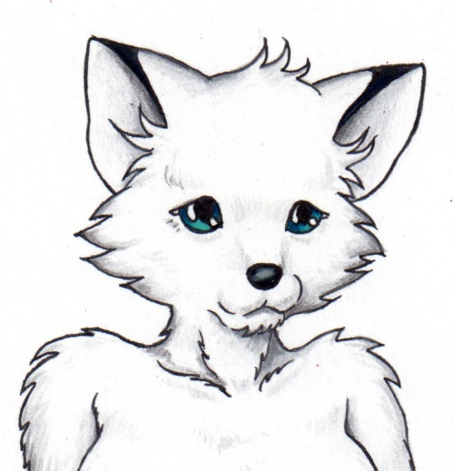 Arctic Fox clipart male Like by fox item? arctic