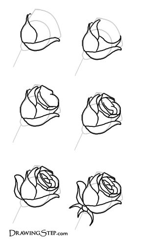 Drawn red rose easy Pinterest a images best of