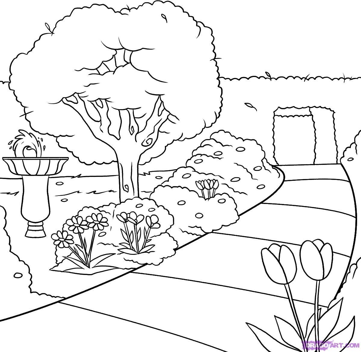 Drawn garden Step Garden Places 6 how