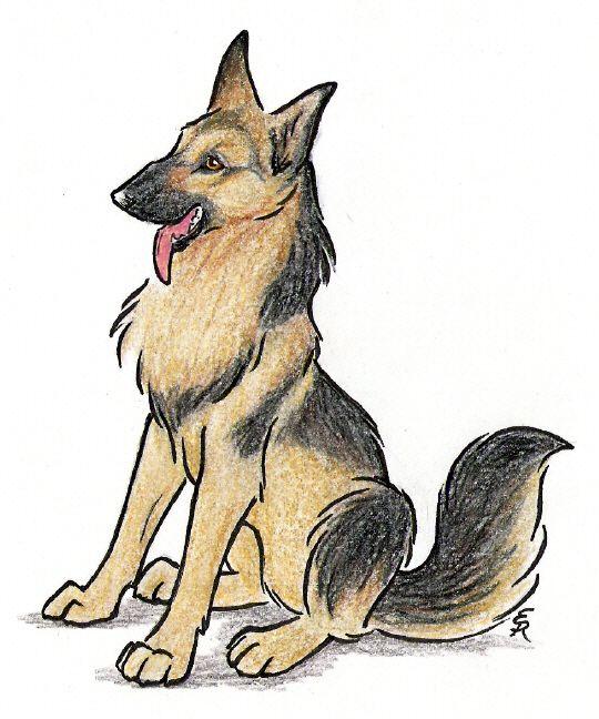 Drawn german shepherd On on deviantART German tattoo