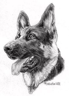 Drawn german shepherd Shepherd black on They this