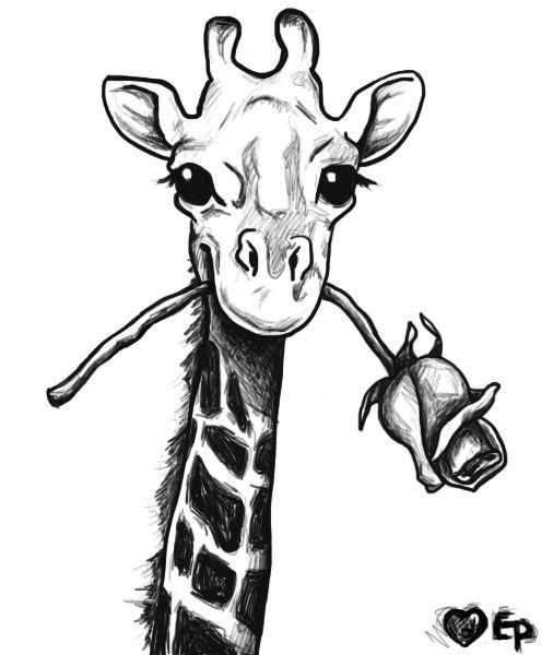Drawn giraffe Drawing Google ideas Search giraffe