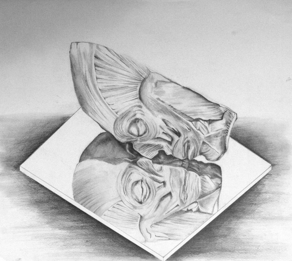 Drawn glass mirror reflection Face ethancsaszar drawing DeviantArt Drawings